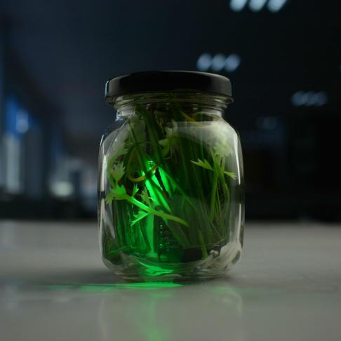 DIY电子萤火虫