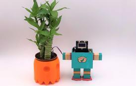 《来吧,一起创客》配套案例:掌控植物伴侣