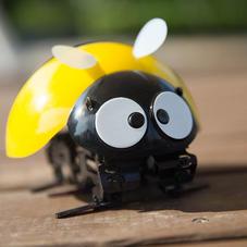 DFROBOT逗逗虫玩具 仿生蜜蜂智能机器人